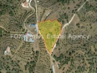 Property for Sale in Nicosia, Xyliatos, Cyprus