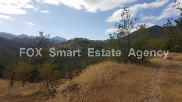 Property for Sale in Nicosia, Agios Epifanios Oreinis, Cyprus