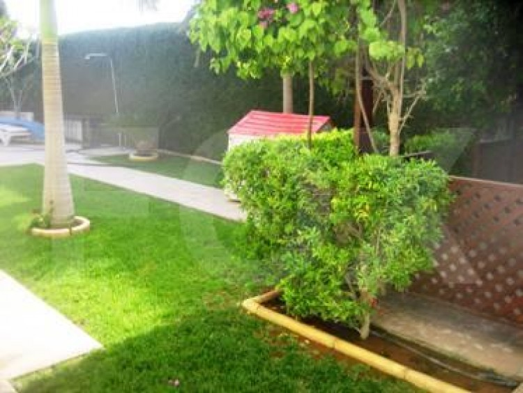 To Rent 3 Bedroom Detached House in Amathounta, Limassol 7