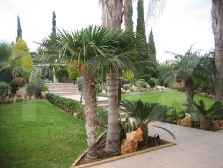 To Rent 5 Bedroom Detached House in Agios athanasios, Limassol 4