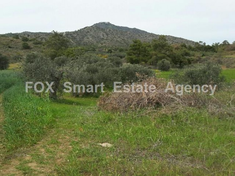 Agricultural Land in Anglisides, Larnaca 4