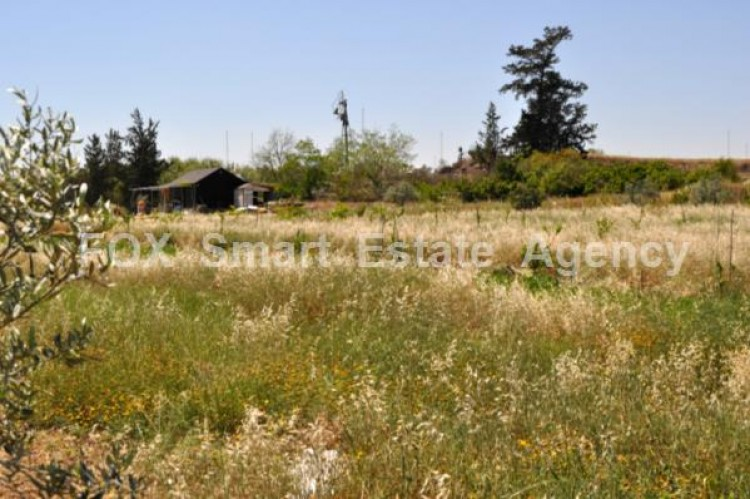 Agricultural Land in Derynia, Famagusta 3