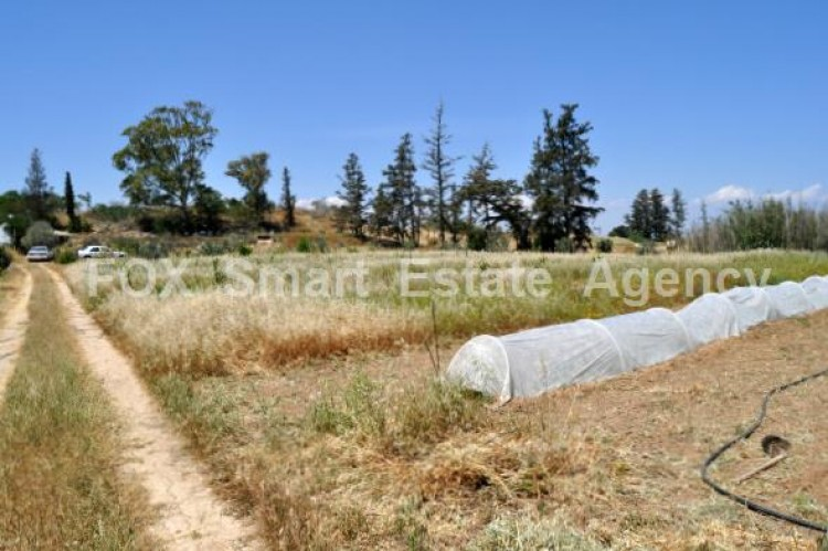 Agricultural Land in Derynia, Famagusta 5