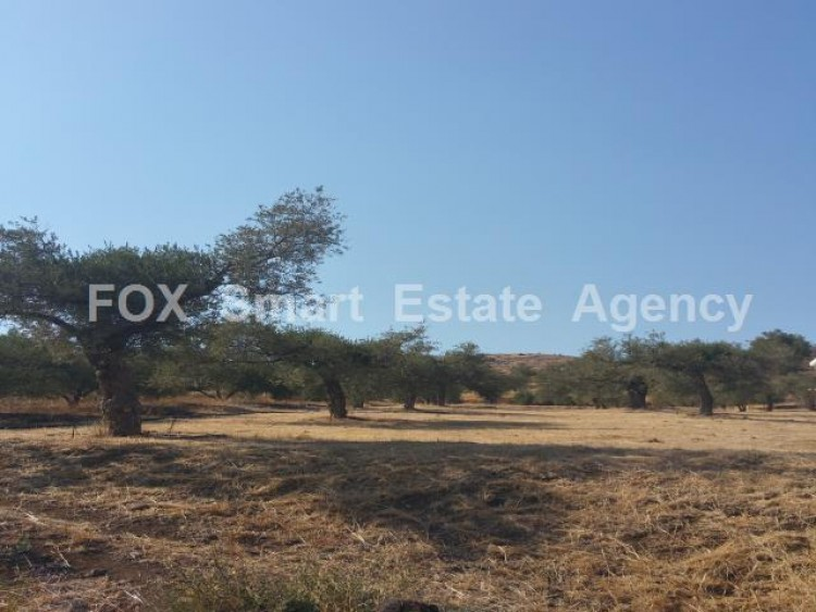 Property for Sale in Nicosia, Kalo Chorio Oreinis, Cyprus