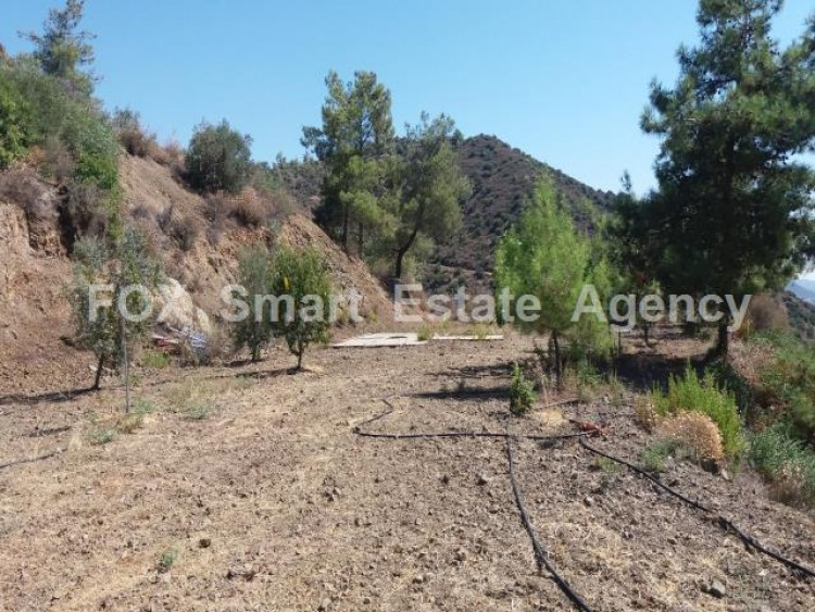 Agricultural Land in Lefkara, Larnaca 10