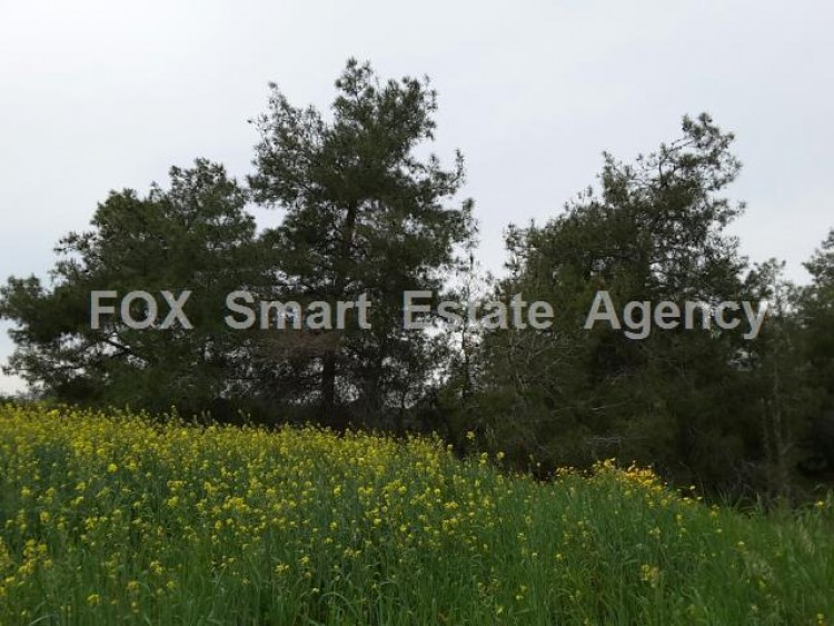 Residential Land in Anglisides, Larnaca 2