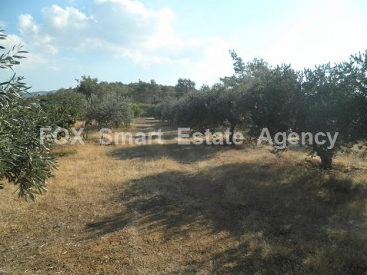Agricultural Land in Kampia, Nicosia 10