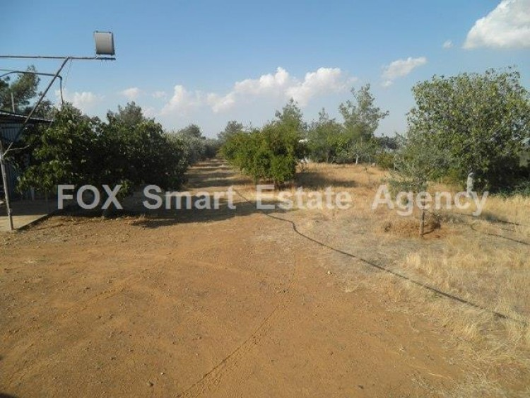 Agricultural Land in Kampia, Nicosia 2