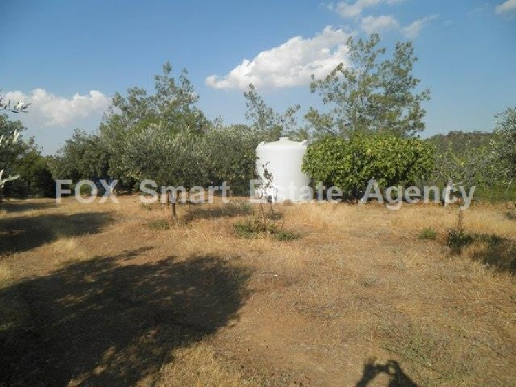 Agricultural Land in Kampia, Nicosia 5