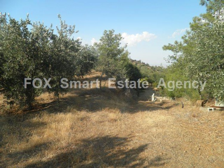 Agricultural Land in Kampia, Nicosia 6