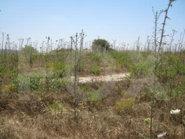 Residential Land in Peyia, Pegeia, Paphos 3
