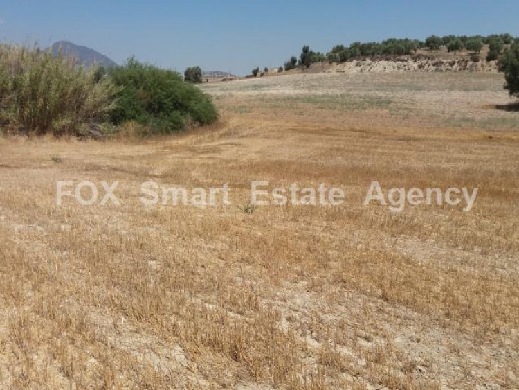 Agricultural Land in Anglisides, Larnaca 11