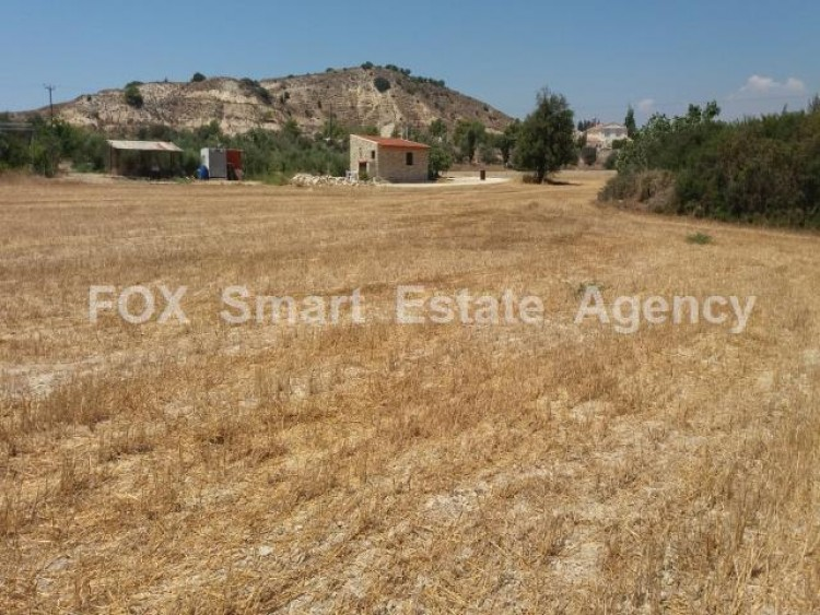Agricultural Land in Anglisides, Larnaca 12