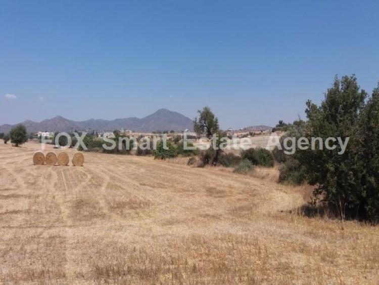 Agricultural Land in Anglisides, Larnaca 13