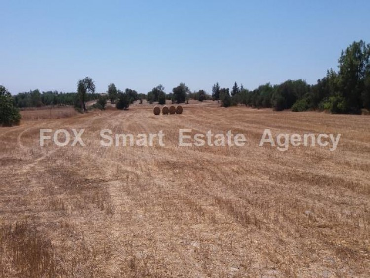 Agricultural Land in Anglisides, Larnaca 2