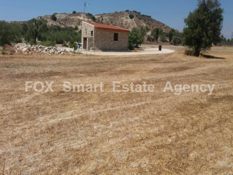 Agricultural Land in Anglisides, Larnaca 6