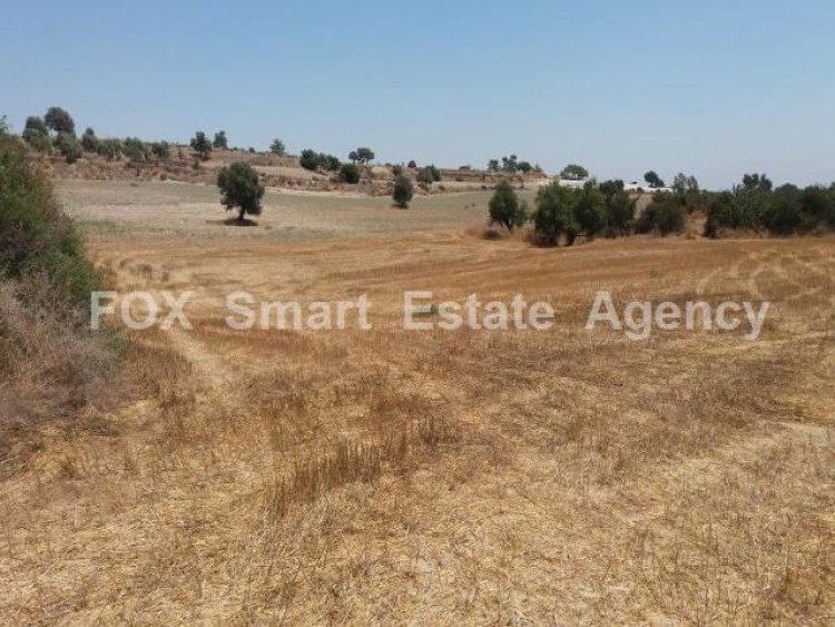 Agricultural Land in Anglisides, Larnaca 7
