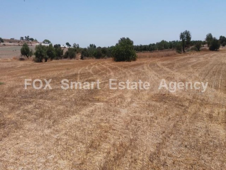 Agricultural Land in Anglisides, Larnaca 9