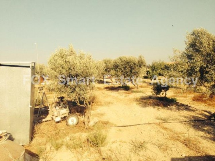 For Sale 3 Bedroom  House in Alethriko, Larnaca 2