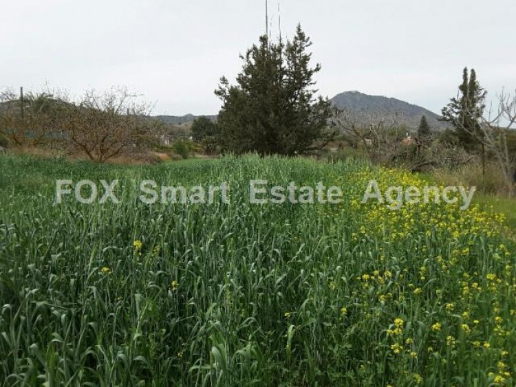 Agricultural Land in Anglisides, Larnaca