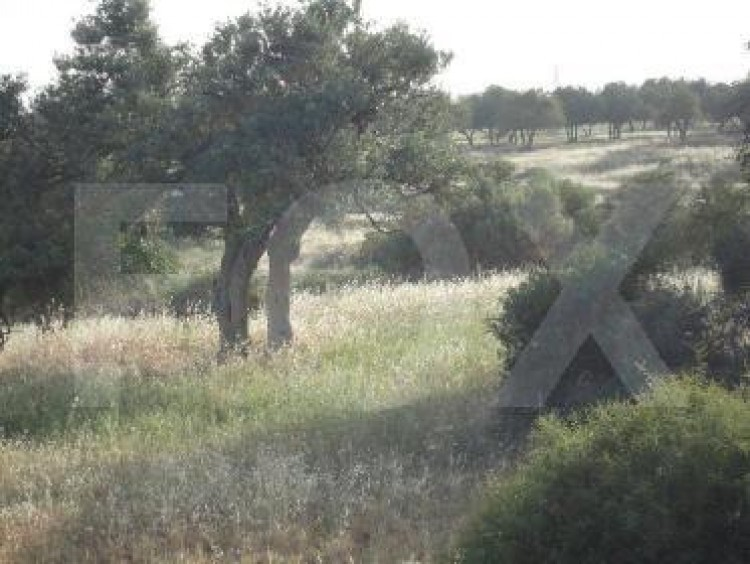 Residential Land in Pachna, Limassol 3