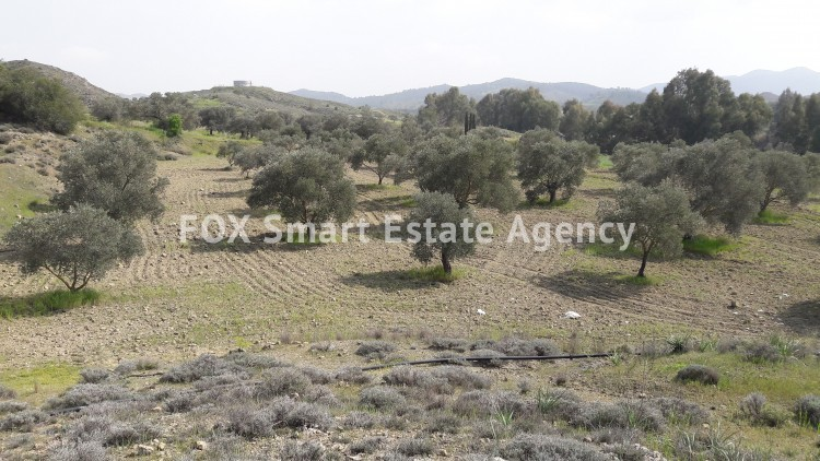 Land in Alampra, Nicosia