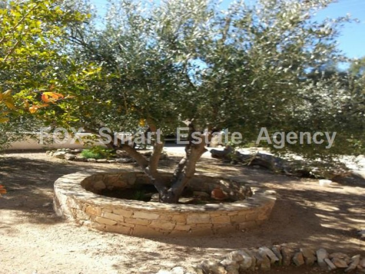 For Sale 4 Bedroom Detached House in Anogyra, Limassol 6