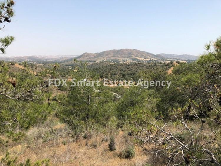 Property for Sale in Larnaca, Kornos, Cyprus