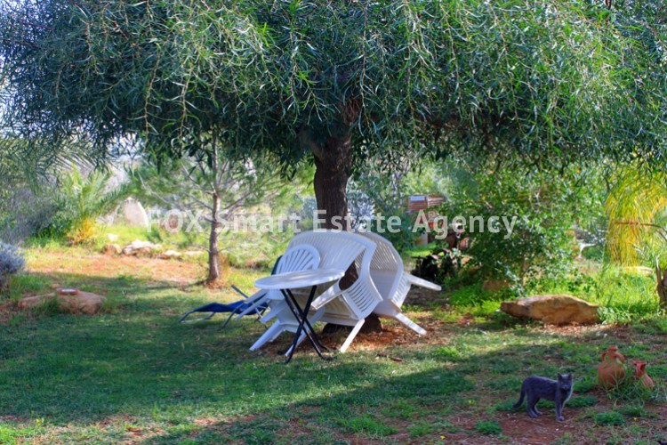 To Rent 4 Bedroom Detached House in Mesovounia, Germasogeia, Limassol 13