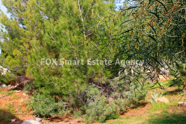 To Rent 4 Bedroom Detached House in Mesovounia, Germasogeia, Limassol 15