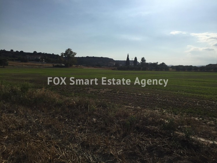 Property for Sale in Larnaca, Mazotos, Cyprus