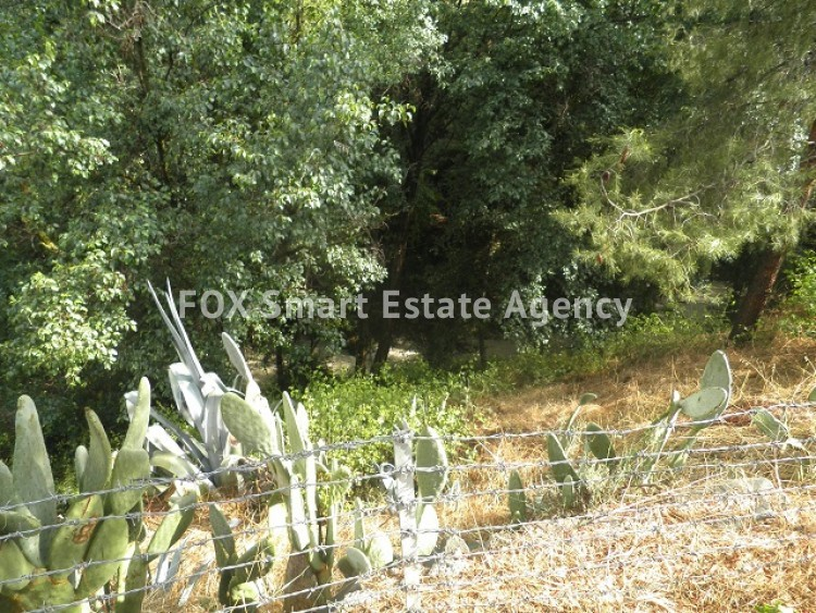 For Sale 2 Bedroom Country House in Palaichori oreinis, Nicosia 18