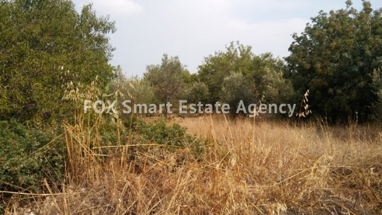 Land in Tala, Paphos