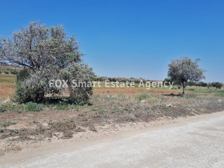Agricultural Land in Agioi trimithias, Nicosia 3