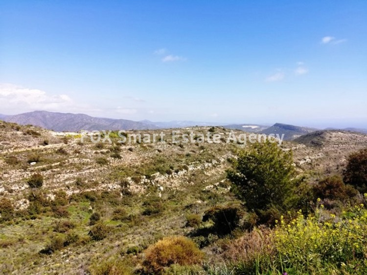 Agricultural Land in Agia paraskevi, Germasogeia, Limassol  2 17