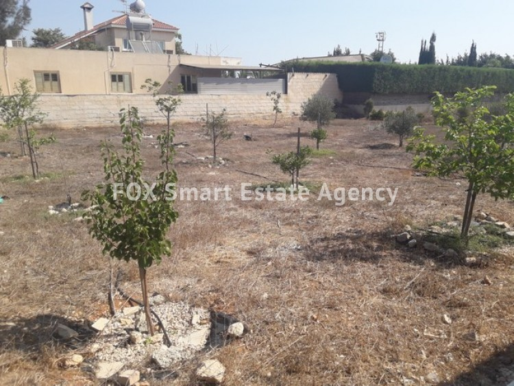 For Sale 3 Bedroom Detached House with large plot of land in Derynia, Famagusta 28