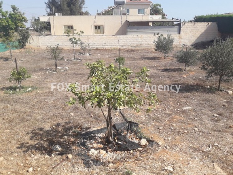 For Sale 3 Bedroom Detached House with large plot of land in Derynia, Famagusta 29