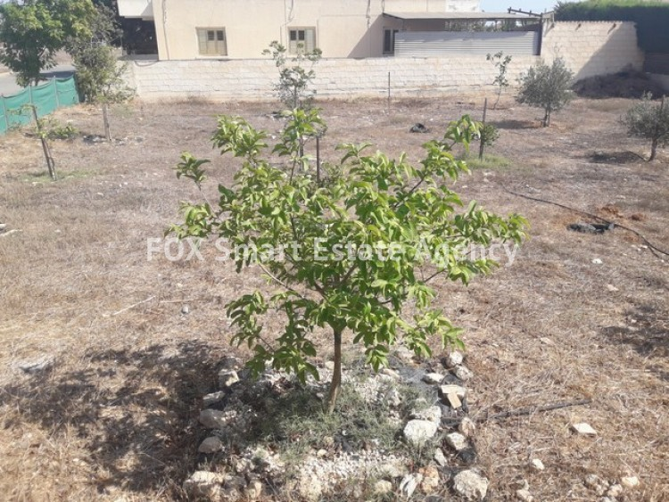 For Sale 3 Bedroom Detached House with large plot of land in Derynia, Famagusta 30
