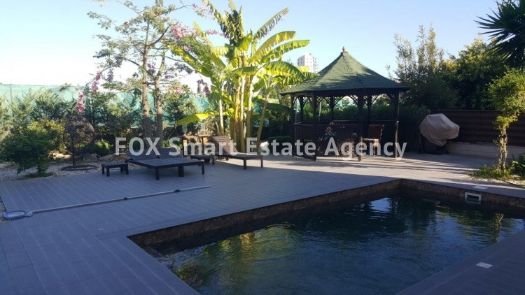 To Rent 4 Bedroom Detached House in Potamos germasogeias, Limassol 2