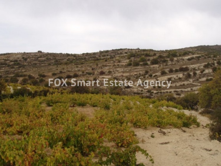 Property for Sale in Limassol, Koilani, Cyprus