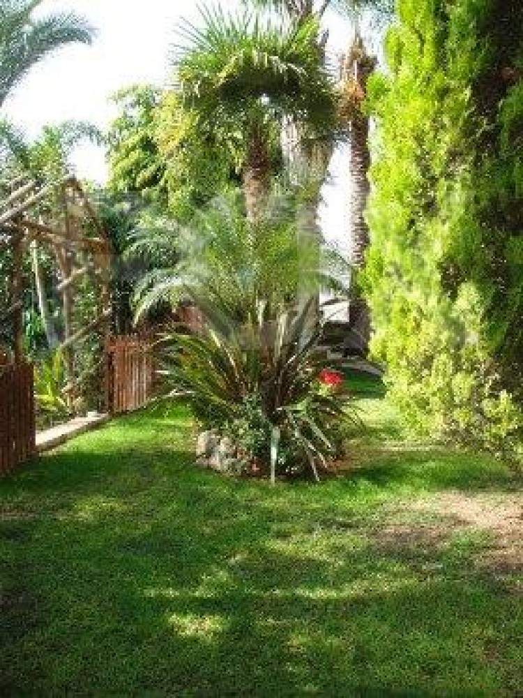 For Sale 4 Bedroom Detached House in Agios athanasios, Limassol 32