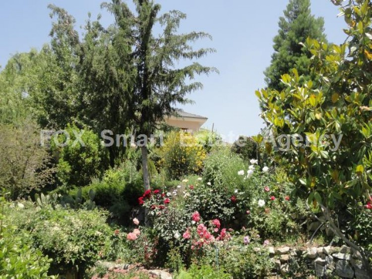 For Sale 5 Bedroom Detached House in Pera pedi, Limassol 10